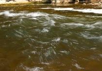 В Башкирии начали подниматься реки