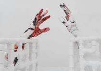 Проект художника Марины Звягинцевой, задуманный год назад, стал коронавирусным пророчеством