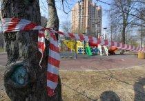 Жесткий пропускной режим в Москве вводиться не будет