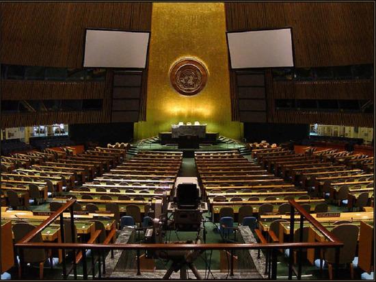 Отменяющую санкции резолюцию России в ООН заблокировали несколько стран