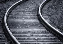 Поезд «Воронеж-Москва» отменят в апреле