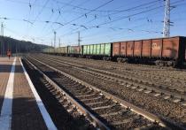 Из-за коронавируса в Туле скорректируют график курсирования поездов