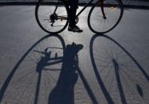 Все в калмыцкой столице сидят по домам, а кто-то ворует велосипеды