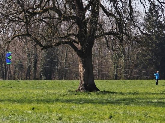В субботу, 4 апреля, на Смоленщине по-прежнему будет ветрено