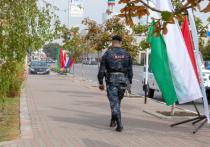 В Чечне попытались опровергнуть избиение палками нарушителей самоизоляции
