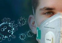 Министр экономики Германии Альтмайер: Всем работникам защитные маски