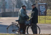 Немецкие специалисты определили типы велосипедов, пригодные для пожилых людей