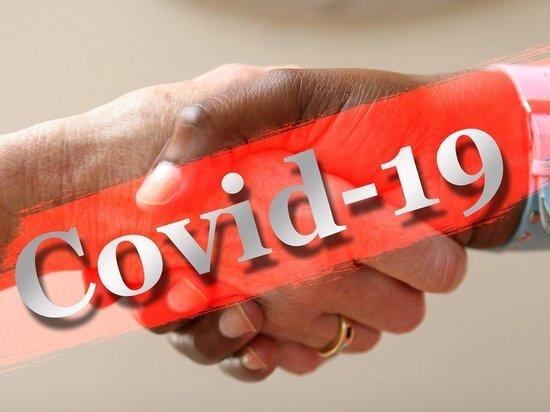 Глава Забайкалья поручил закупить экспресс-тесты на коронавирус