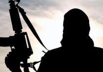 Ликвидированный в Уфе террорист был боевиком запрещенной организации