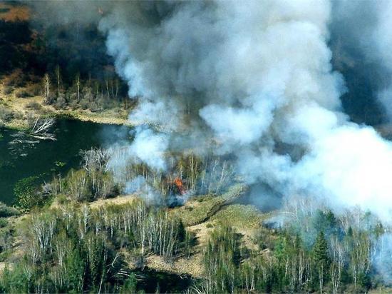 Глава Забайкалья поручил изменить систему оплаты лесных пожарных