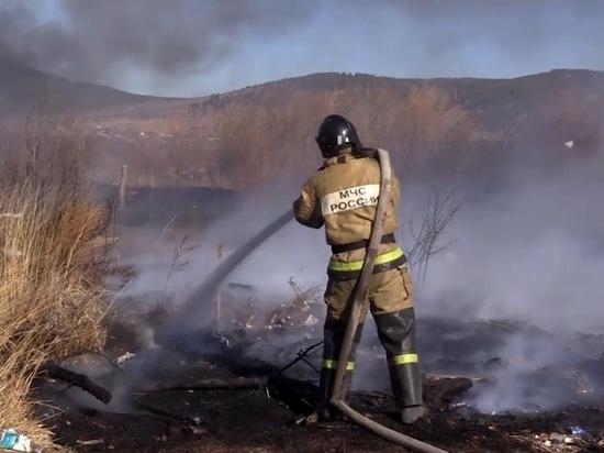 Семь из 58 поджигателей в Забайкалье оказались детьми