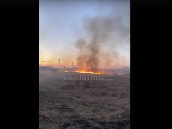 Сухую траву сожгли в читинском парке Победы вопреки запрету