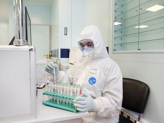 График заболеваемости коронавирусом в России сравнили с французским: тенденция печальная