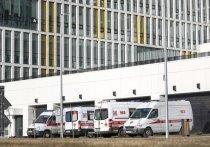 К помощи борющимся с коронавирусом российским врачам подключились волонтеры-переводчики