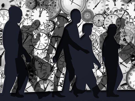 Выбор профессии в Германии: В каких отраслях работают психопаты