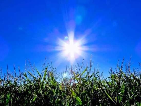 В Белгороде ожидается 14 градусов тепла