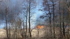 Тульские пожарные тушат поля под Ясной Поляной