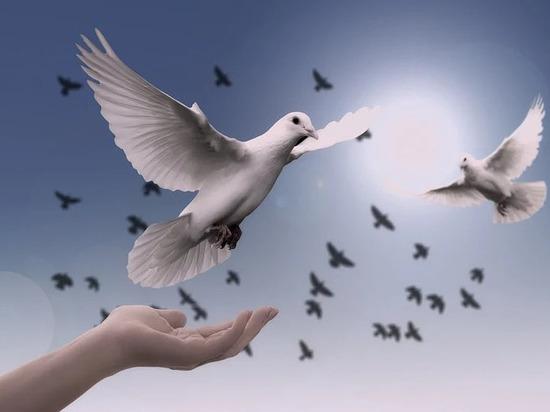 Благовещение Пресвятой Богородицы: что нельзя делать 7 апреля