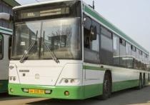Пять номеров автобусов в Смоленске изменили свои маршруты