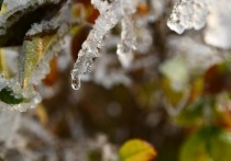 В Кировской области потеплеет к концу рабочей недели