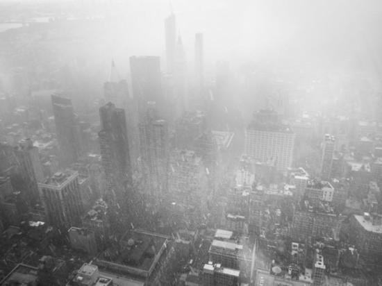 В Нью-Йорке хотят хоронить жертв коронавируса в траншеях в парках