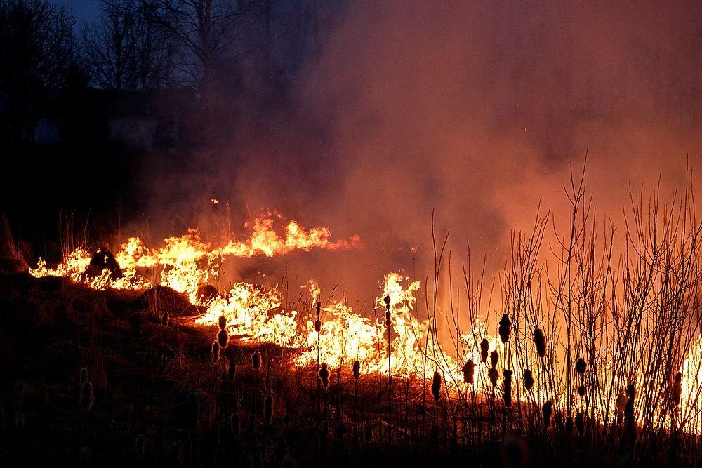 Пожар на улице Юности в Пскове