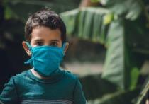 Коронавирус в Германии: Из школы сделают инфекционный центр