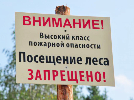 Посещение леса запретят в Забайкалье с 9 апреля