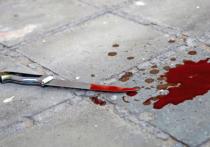 Двоих жителей Хакасии осудят за поножовщину в компании