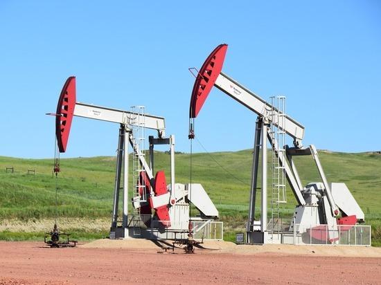 Названа стоимость нефти при срыве новой сделки ОПЕК+