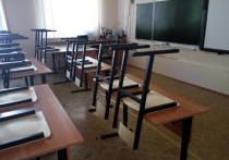 Минпросвещение разрешило школам досрочно закончить учебный год