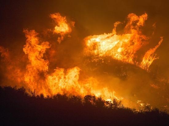Глава Забайкалья рассказал о готовности края к лесным пожарам