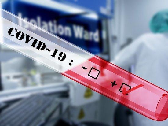Число заразившихся коронавирусом в России превысило 10 тысяч человек