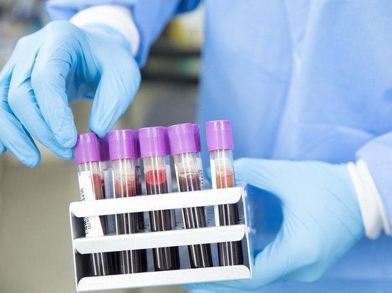 В России провели более 1 млн тестов на коронавирус