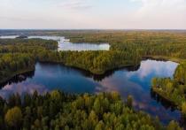Аналитик назвал области России, которые пощадит коронавирус