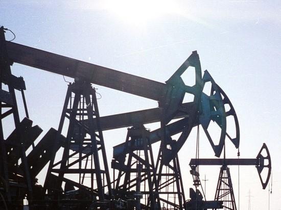 Цена российской нефти Urals превысила $20 за баррель
