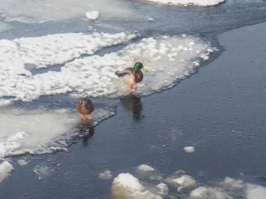 Трое рыбаков чуть не утонули на озеро Лаче