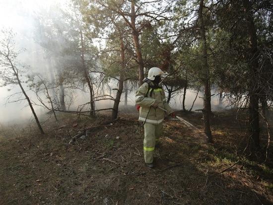 В Волгоградской области проходит акция «Остановим огонь вместе»