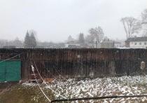 В середине апреля в Тверской области выпал снег