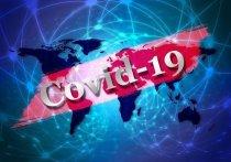 Оперативный штаб Алтайского края предоставил информационную сводку по коронавирусу на 13 апреля 2020 года