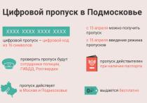 Инструкция по получению электронного пропуска для поездок на личном транспорте по Серпухову и Подмосковью