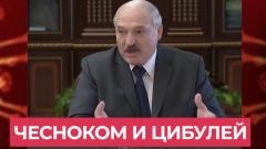 Лукашенко предложил альтернативные способы профилактики коронавируса: трактор, утюг, чеснок