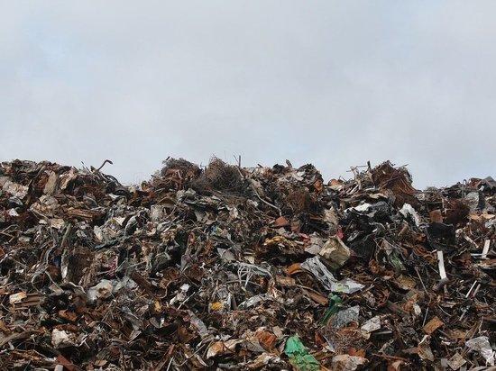 Проект рекультивации городской свалки обсудили в Пскове