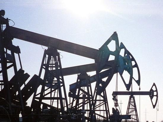 Цена нефти Urals снизилась до $16,71