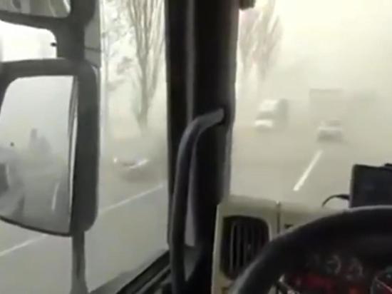 Киевлян призвали не выходить из дома из-за чернобыльской гари