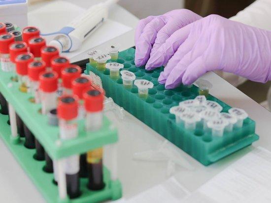 Названа точность тестов на коронавирус в России
