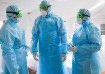 Ученые раскрыли новые данные об инкубационном периоде коронавируса