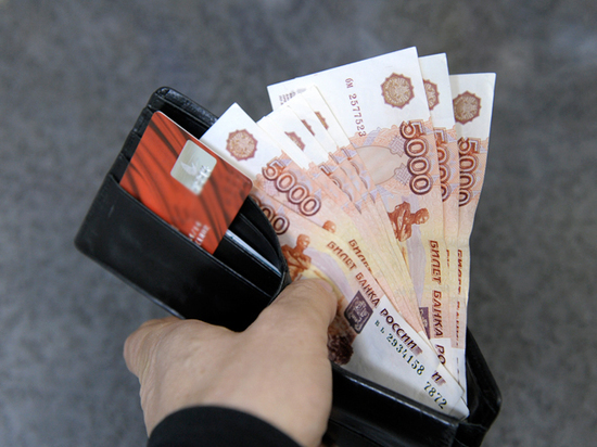 Единый реестр доходов россиян покажет их власти как на ладони