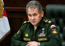 Шойгу доложил Путину о готовности направить против COVID-19 медицинский спецназ