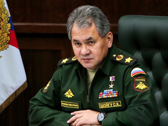 Шойгу доложил Путину о готовности направить против COVID-19 медицинский спецназ0